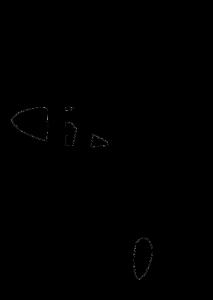ISWI2013_logo